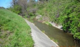 Hollybrook Stream Biostabilization