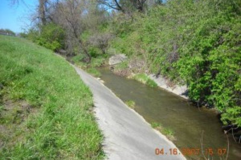 Hollybrook Stream Biostabilization